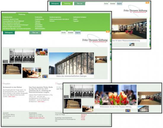 Abb. 1: Startseite der Fritz Thyssen Stiftung