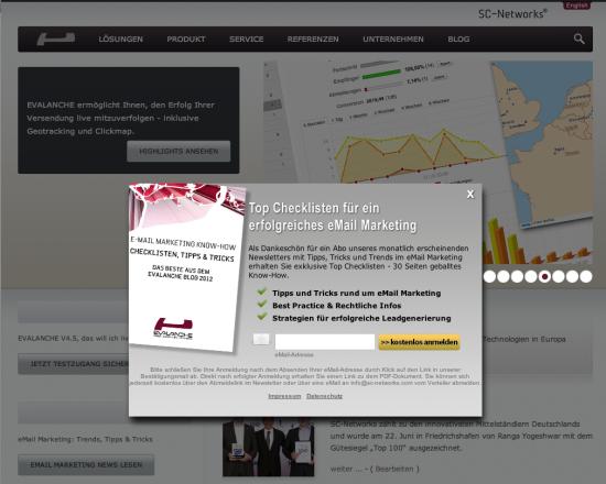 Screenshot Website Evalanche